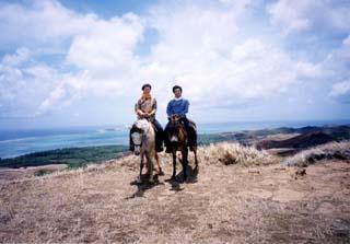 馬とロバ(笑)でトラッキング